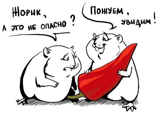 анекдот про жору