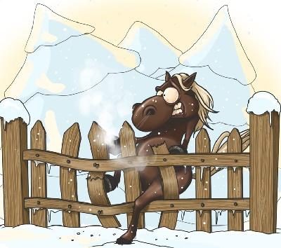 Тосты на день Рождения с конем