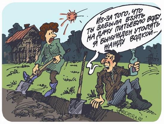 карикатура свежачок
