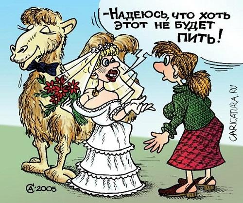 Read more about the article Самые смешные современные анекдоты