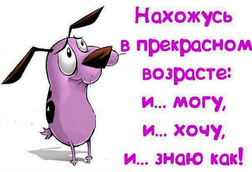 Read more about the article Прикольные статусы про день рождения