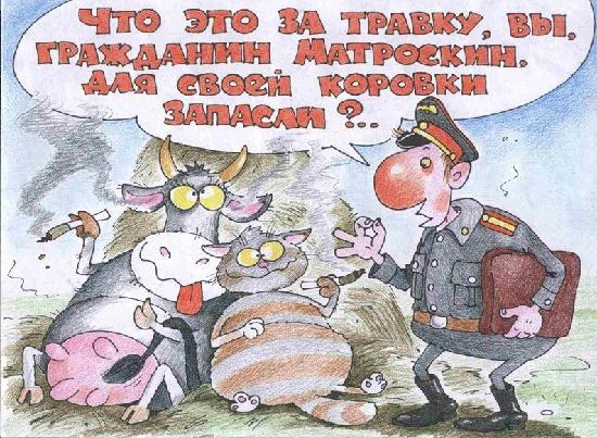 карикатура про милицию и полицию