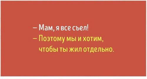 Read more about the article Смешные до слез фразы о жизни