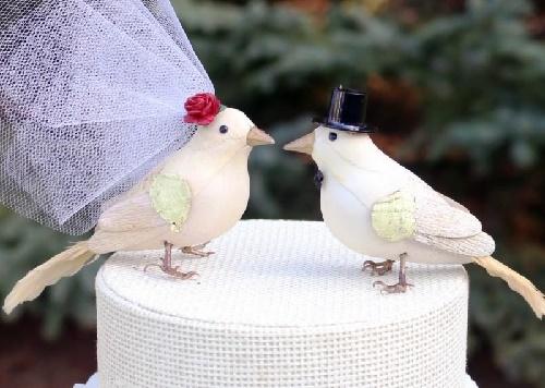 Read more about the article Тосты на свадьбу про птиц