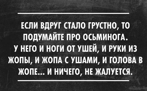 Read more about the article Читать прикольные и веселые фразы