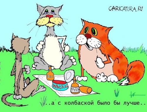 карикатура про котов