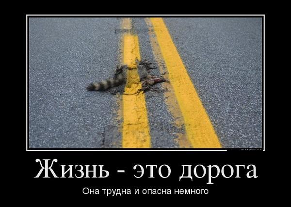 демотиватор про дороги