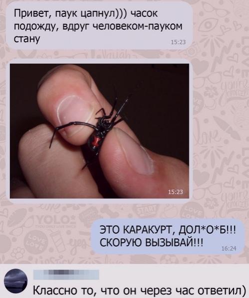 прикольная смс-ка