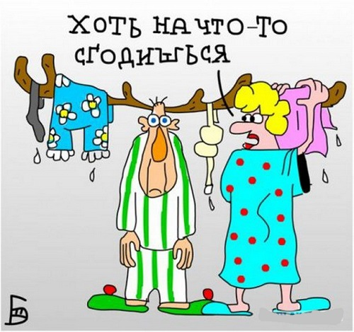 Read more about the article Свежая подборка веселых карикатур