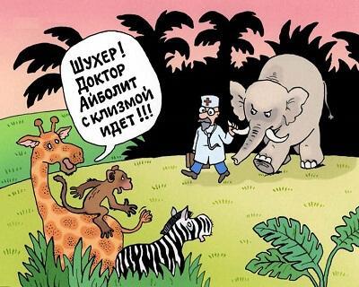 прикольная картинка про животных