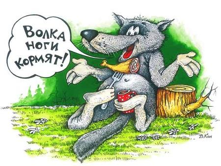 смешная картинка про волка