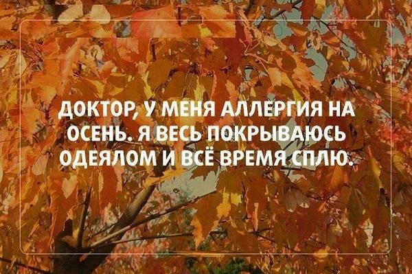 Смешные цитаты про осень