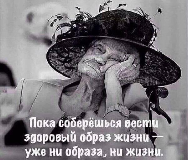 Смешные цитаты о жизни