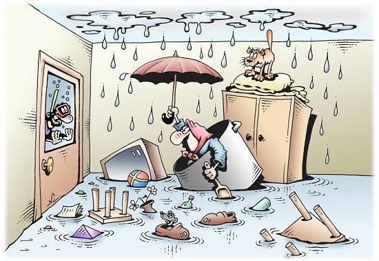 смешные и забавные карикатуры