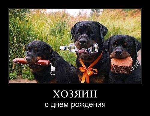 Read more about the article День Рождения на демотиваторах