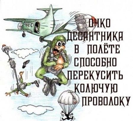 карикатура картинка про вдв
