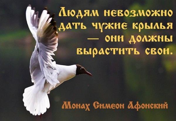 Read more about the article Красивые статусы про крылья