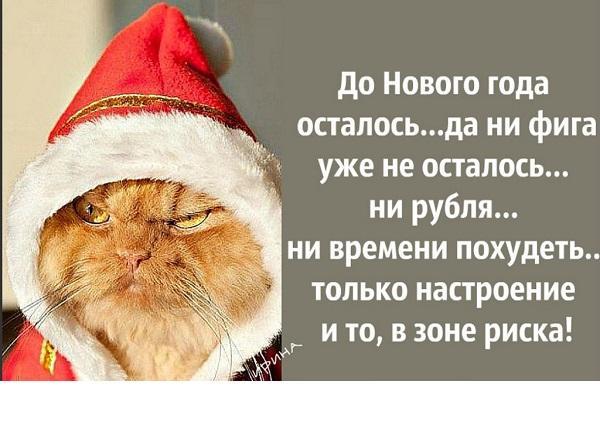 Read more about the article Новогодние смешные до слез статусы