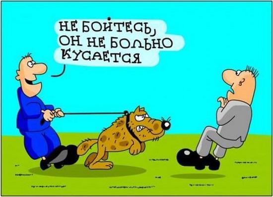 Прикольные и смешные карикатуры