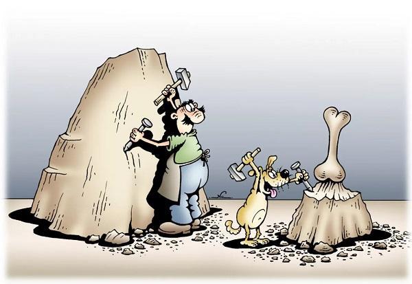 прикольные анекдоты про собак