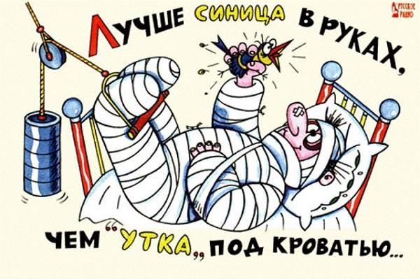 Read more about the article Прикольные поговорки и фразы