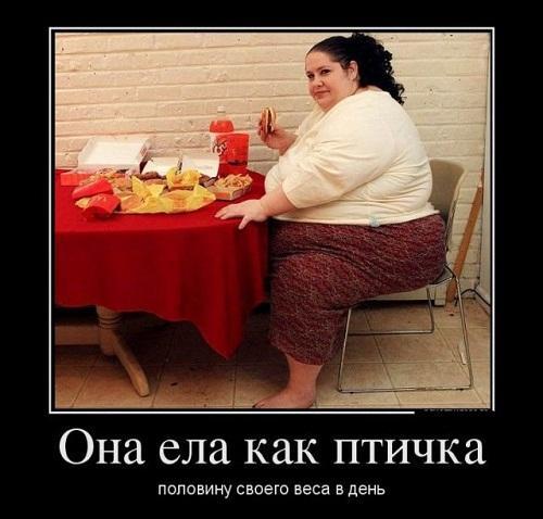 прикольный демотиватор про диету