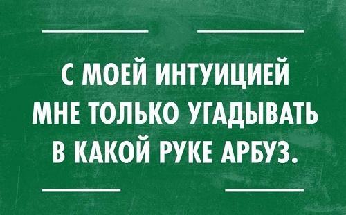 Read more about the article Смешные шутки, фразы и цитаты (картинки)