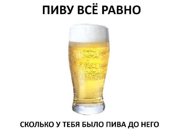 Смешные статусы и фразы о пиве