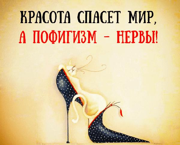 Read more about the article Смешные статусы и шутки про пофигистов