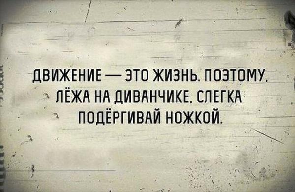 Веселые цитаты о жизни