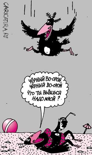 карикатура картинка про птиц