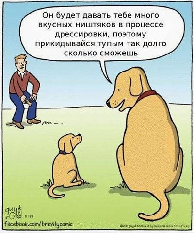 карикатура про собак