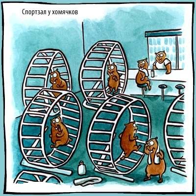карикатура про зверей и животных