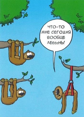 прикольная карикатура про жизнь