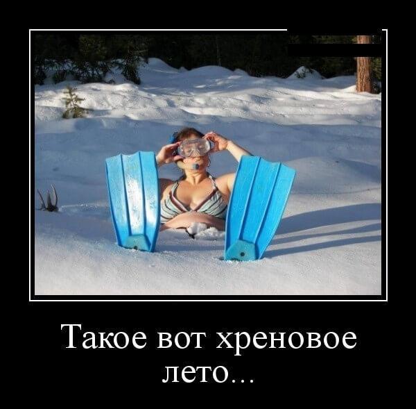 смешная до слез картинка про лето