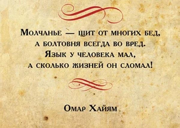 цитаты мудрые и смешные картинка