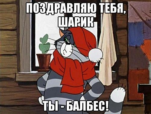 мемы про матроскина