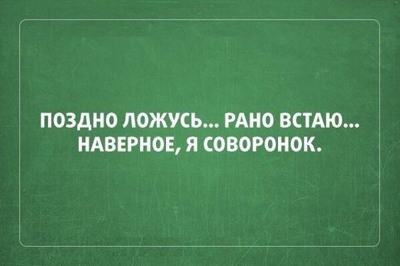Read more about the article Статусы смешные до слез короткие