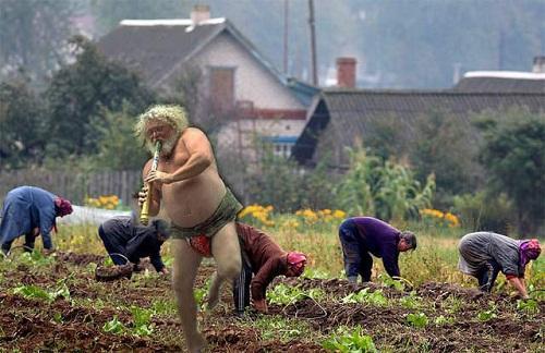 смешное фото из деревни