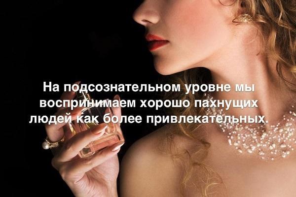 цитаты про запах