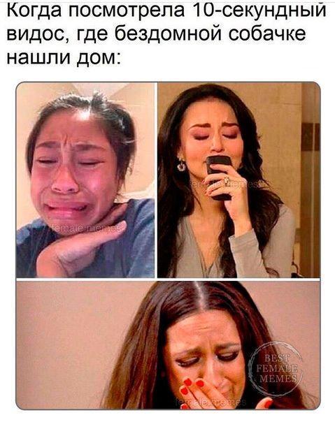 очень смешная картинка до слез с девушками