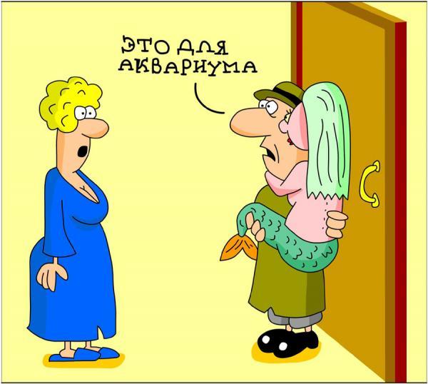 анекдоты про мужика и жену