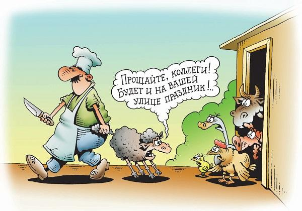 самые смешные анекдоты про животных