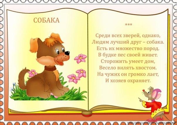 Детские стишки про животных