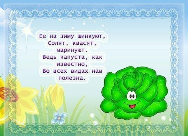 Read more about the article Детские стишки про овощи и фрукты (картинки)