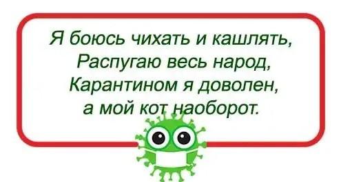 частушки про коронавирус и изоляцию