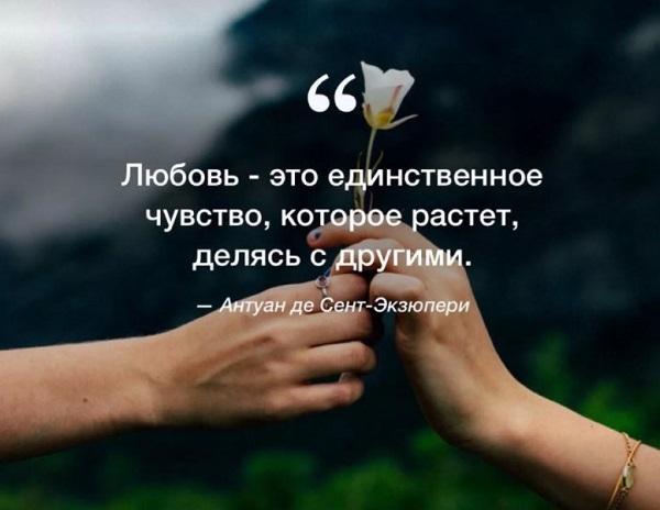 Read more about the article Красивые цитаты про любовь со смыслом