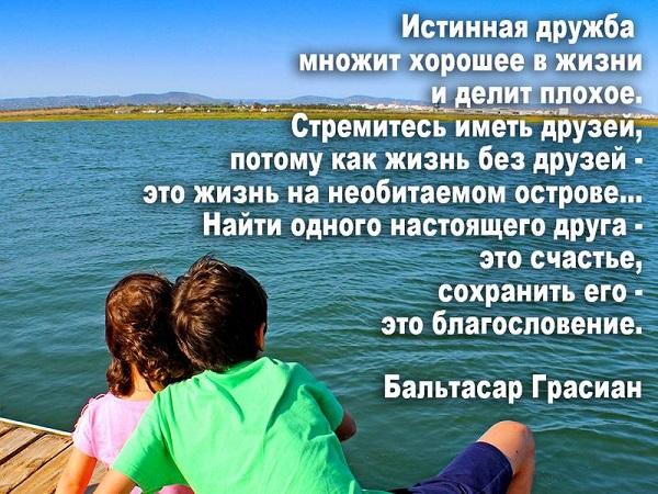 Read more about the article Короткие цитаты про дружбу со смыслом