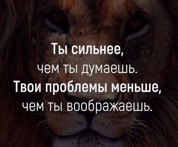 Мудрые цитаты про смысл жизни