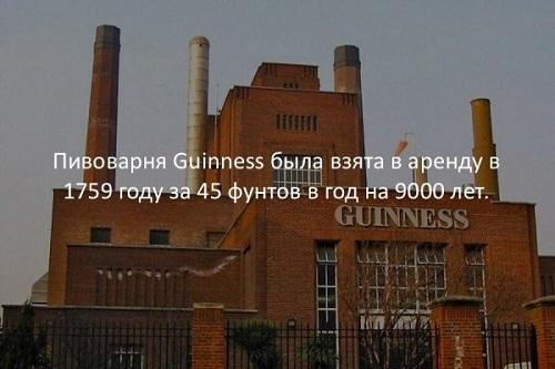 Смешные необычные факты